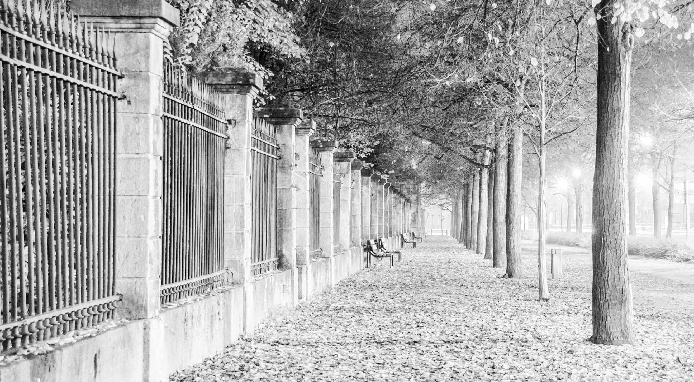 Am Rand des Hofgartens in der Ottostraße